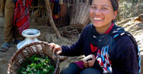 Nettles and millet: Valuing local food in Nepal